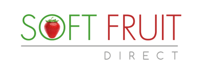 softfruite_logo